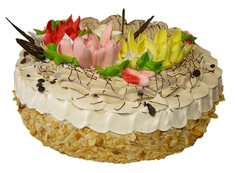 фото торты с мамонтенком